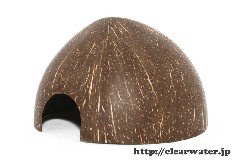 coconuts shelter for apistogramma